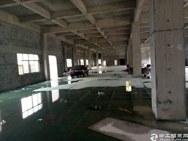 惠东百花新出全新标准一楼2158平