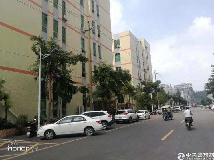 龙大南光双高速出口一楼3000平米重工业厂房出租