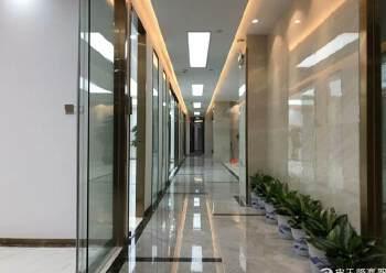 龙华中心区地铁口五分钟路程甲级精装修写字楼750平出租图片2
