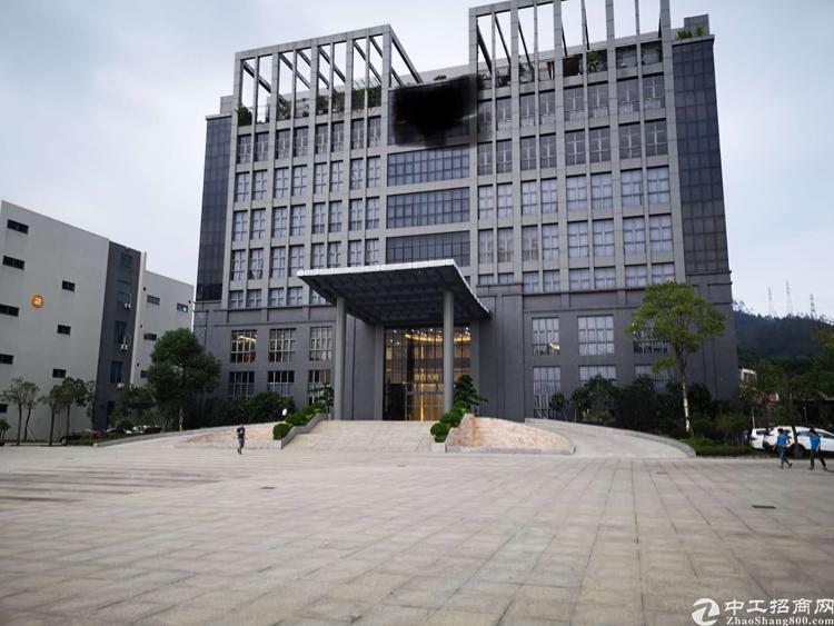 惠州新圩高大上原房东重工业标准厂房分租啦