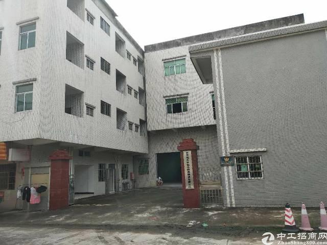 茶山镇标准厂房3800平方