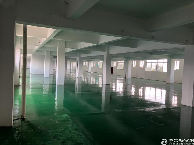 大岭山镇新出3楼1200平米厂房出租