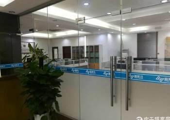 龙岗工改商电商产业园招租面积100平起租图片3