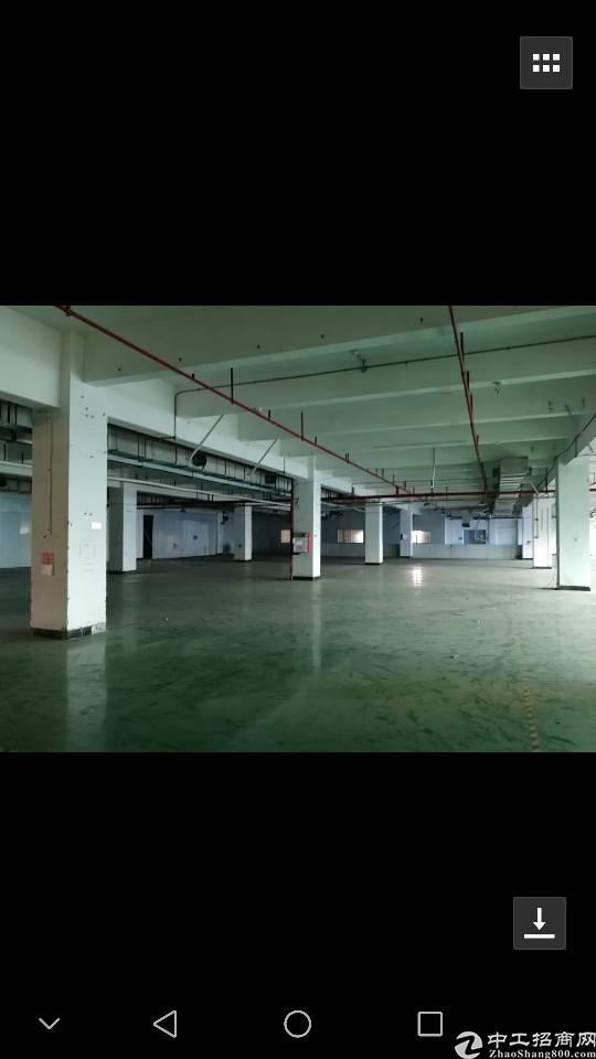 高埗镇工业园区分租二楼标准厂1200平!