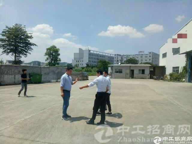 厚街镇沙塘村现有一手房东独院钢构厂房5900平米招租