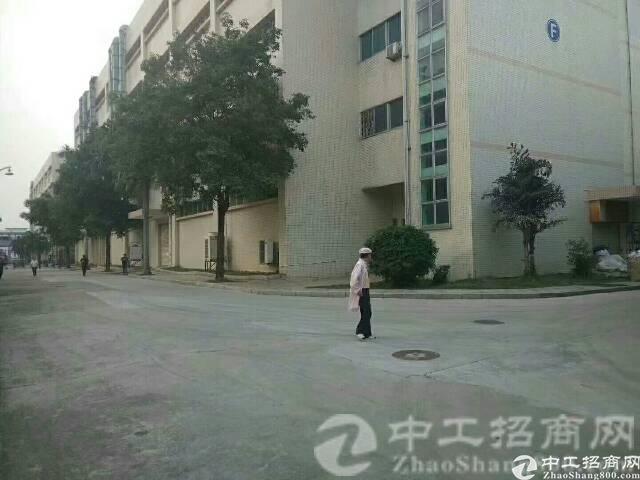 厚街镇赤岭大型工业园楼上1500平方带天花板吊顶豪华装修厂房