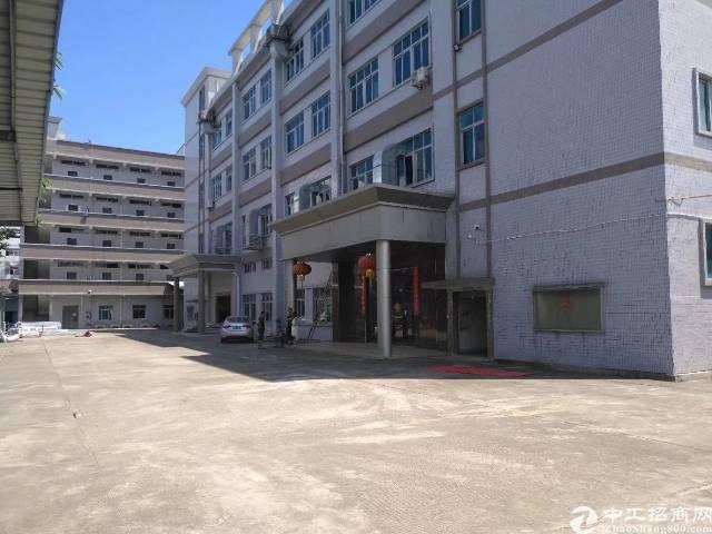 大岭山新出带消防喷淋地坪漆独院厂房6300平原房东出租