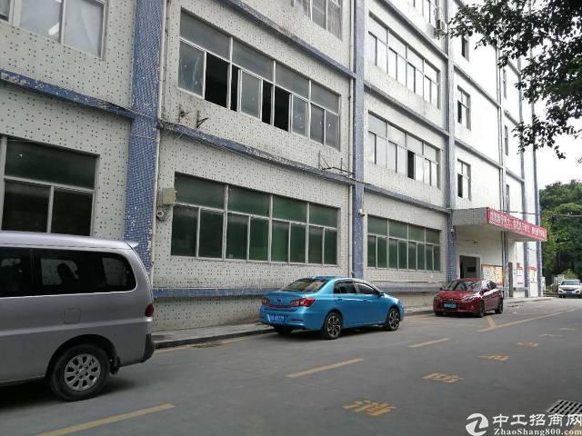 平湖新出厂房带红本,带消防500平米厂房招租!