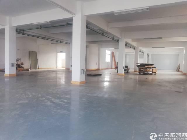 惠州惠城区小金口独门独院厂房招租-图6