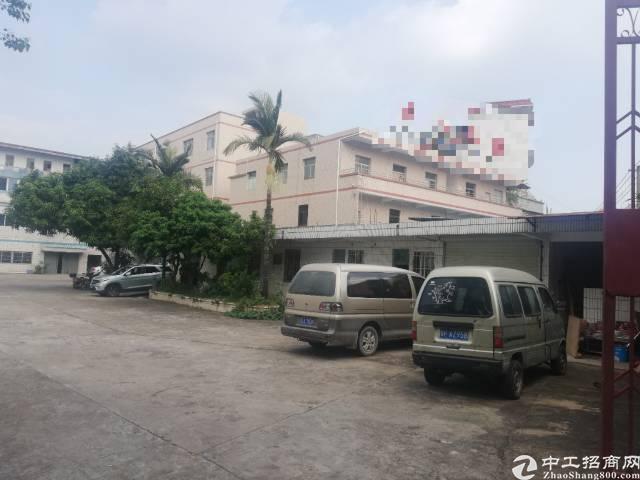 惠州惠城区小金口独门独院厂房招租-图3