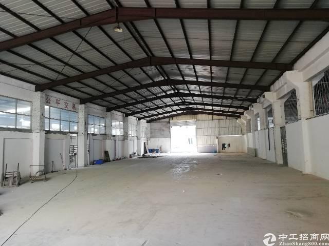 凤岗镇繁华地段空出单一层钢构1400平米滴水七米可做仓库无污