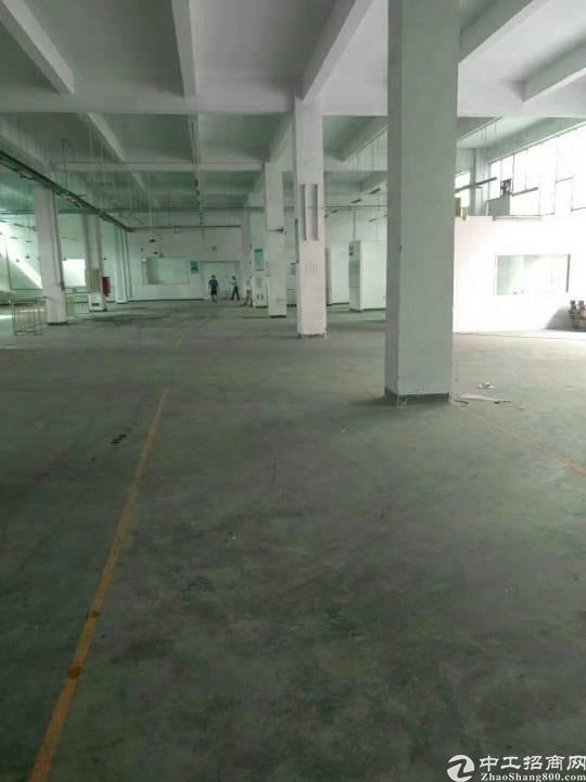 公明西田一楼整层精装修厂房3000平米招租-图4