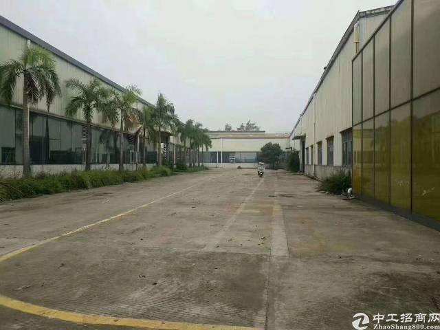 福永107国道边独门独院10000平米钢构出租可分租