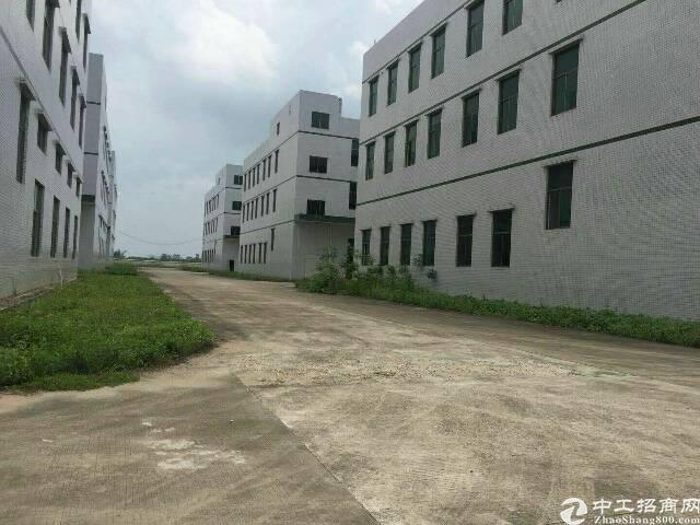 总园区10万平方,标准厂房出租66000平方-图3