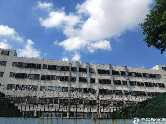 虎门,新出标准厂房。厂房1/7每层1450平(含公摊)价格2