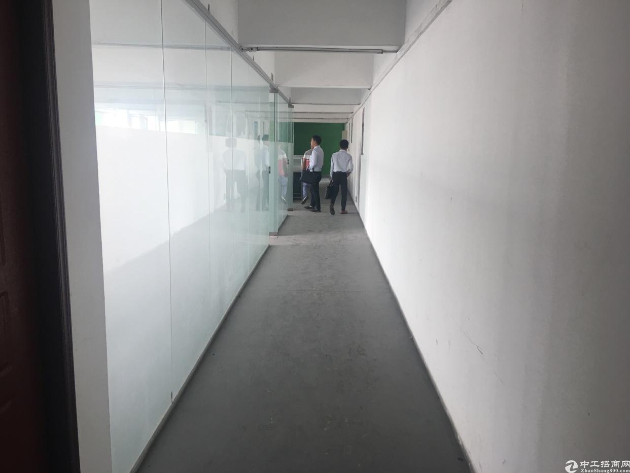 西丽白芒关口附近新出厂房500平方米带装修。