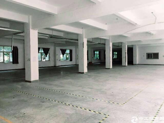 深圳西乡厂房整层1000平出租