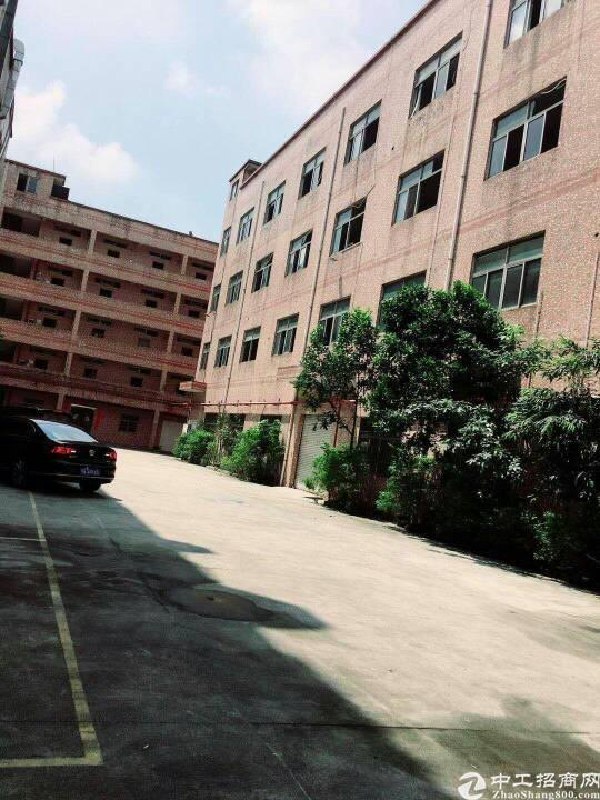 西乡鹤洲新出厂房独院12000平米出租,可分租