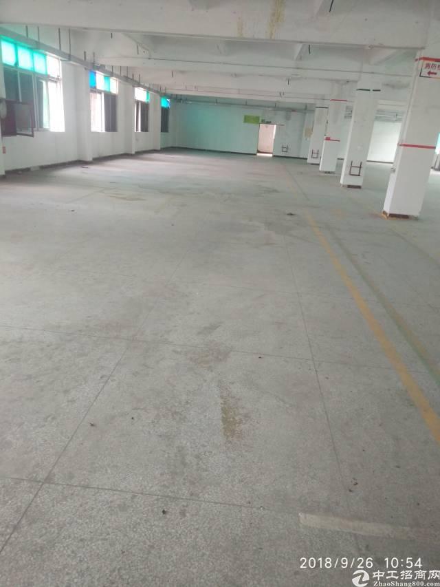平湖镇凤凰大道新出楼上厂房出租