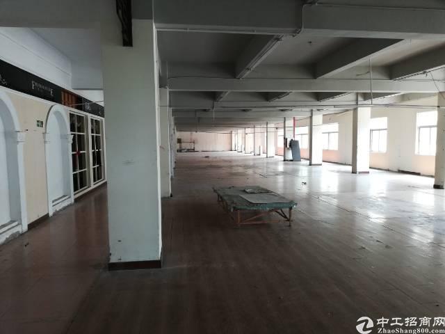 大岭山镇大环村标准独院分租二楼2300平方