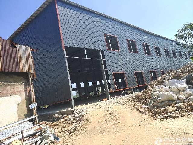 高埗镇全新钢构厂房