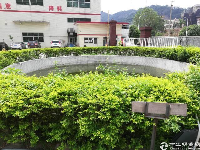 大岭山镇大环村独门独院分租标准一楼4300平方,滴水7米