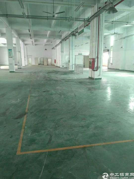 公明西田一楼整层精装修厂房3000平米招租-图3