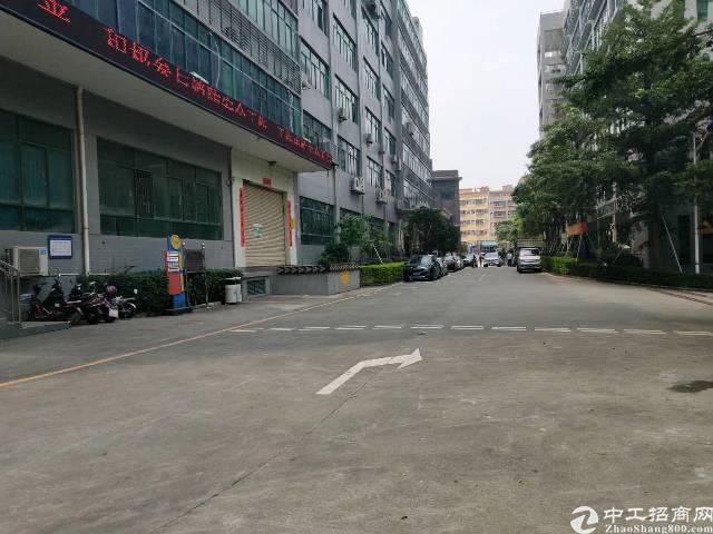 红本原房东厂房2993平方出租