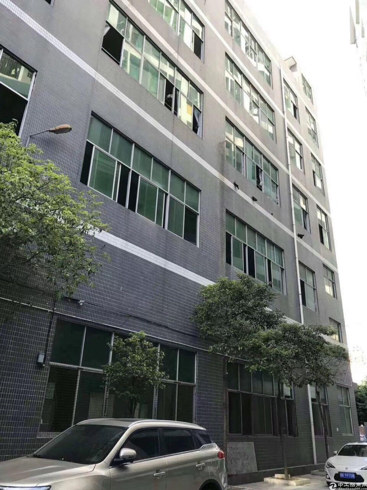 坂田上雪科技园原房东2000平方