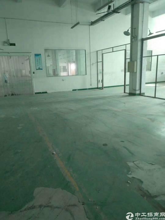 公明西田一楼整层精装修厂房3000平米招租-图5