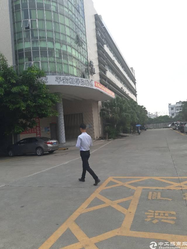 沙井共和工业区独院厂房招租,有前台办公室,豪华装修,水电齐全