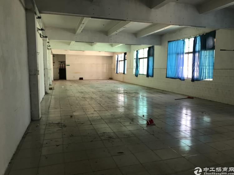 平湖独栋厂房一万平低价出租-图3