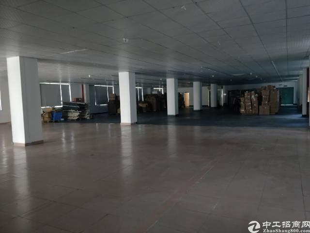 前进二路单层使用面积920平米厂房出租。