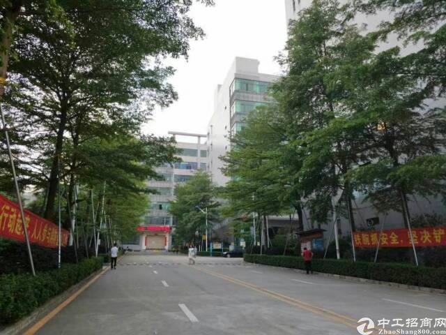 石岩高速口原房东红本厂房1+2楼4800平方厂房出租