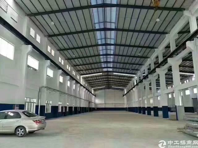 福永国道边新出单一层钢构1700平招租