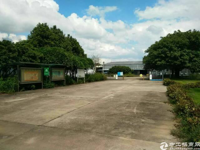 园洲镇新出原房东单一层面积12700平米厂房招租