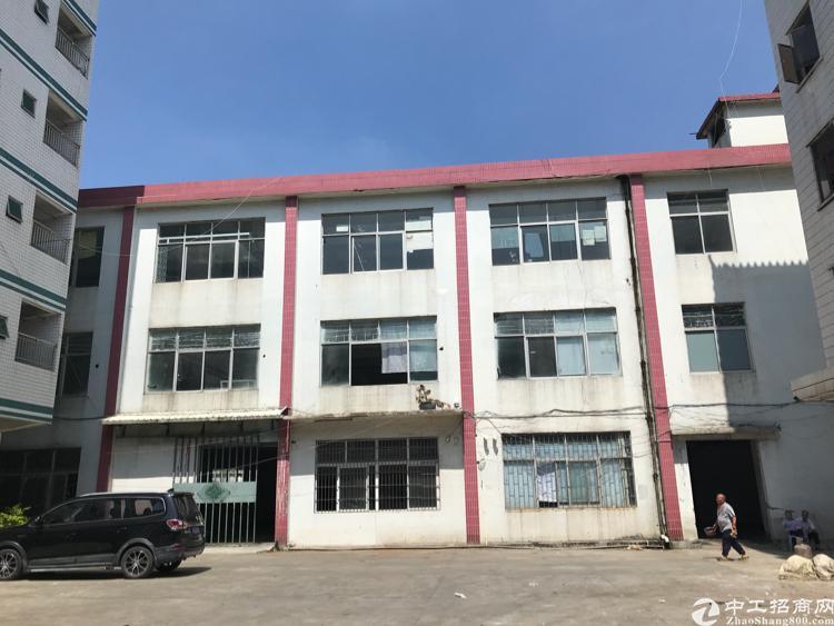 平湖独栋厂房一万平低价出租-图6