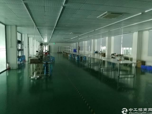 公明镇松白路旁独院楼上客户转租全新精装厂房1300平米
