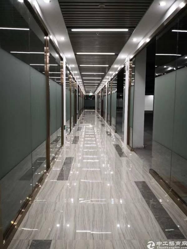 龙华红本电商园办公室招租185㎡起分租