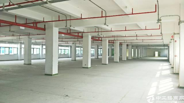 西乡臣田花园式工业园1300平方米厂房出租