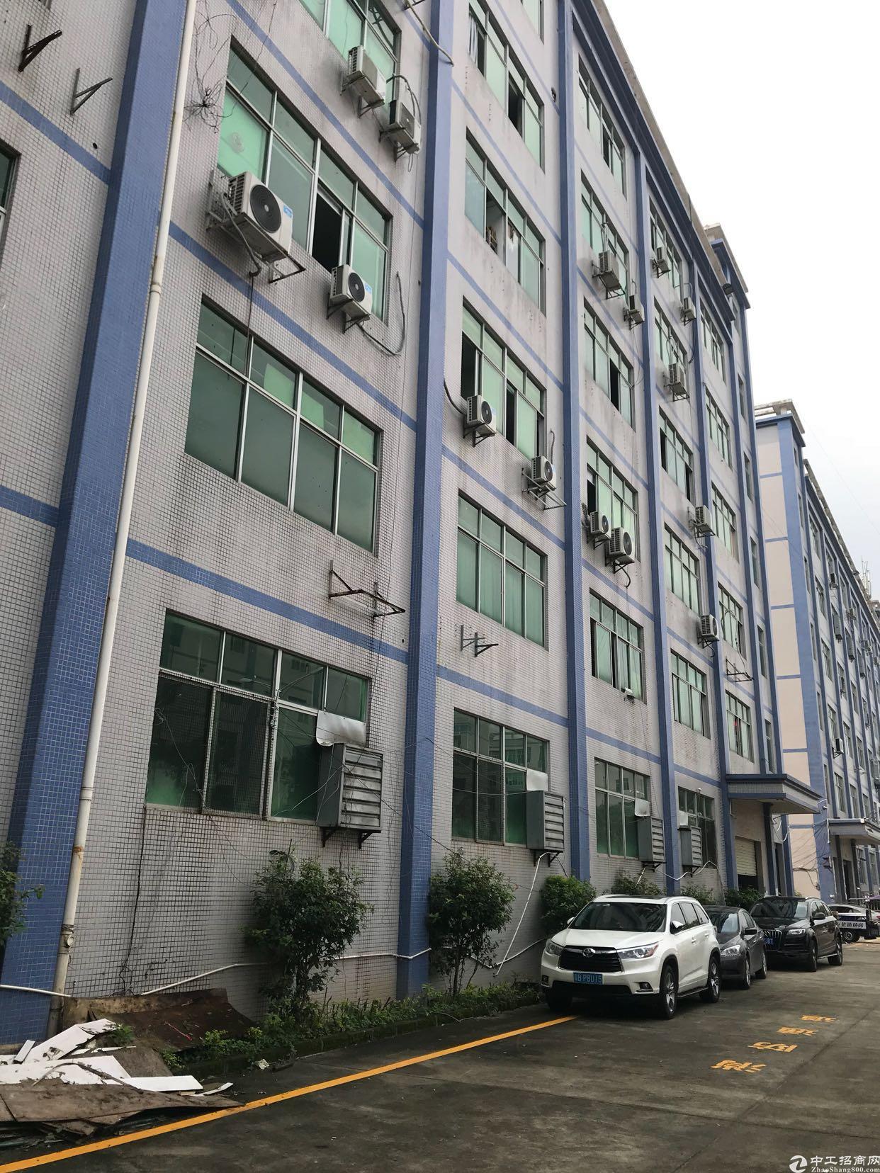 坂田上雪科技园现有厂房1600平方出租可以大小分租