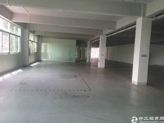 原房东出租宝安区福永塘尾地铁口附近1500平精装厂房-图5