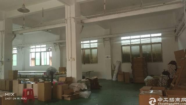 龙岗龙西标准厂房一楼1300平出租
