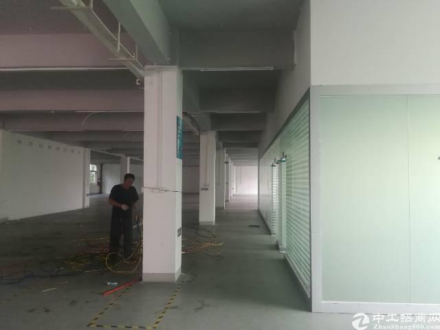 原房东出租宝安区福永塘尾地铁口附近1500平精装厂房