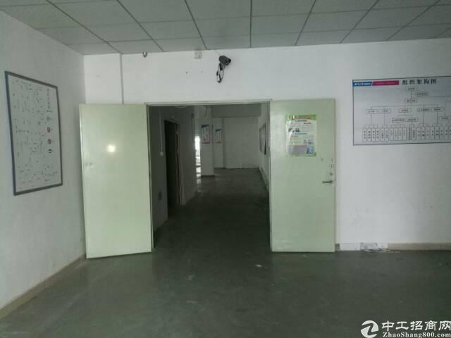 西乡洲石路靠鹤洲工业区1760平带装修厂房招租,大小可分租-图2