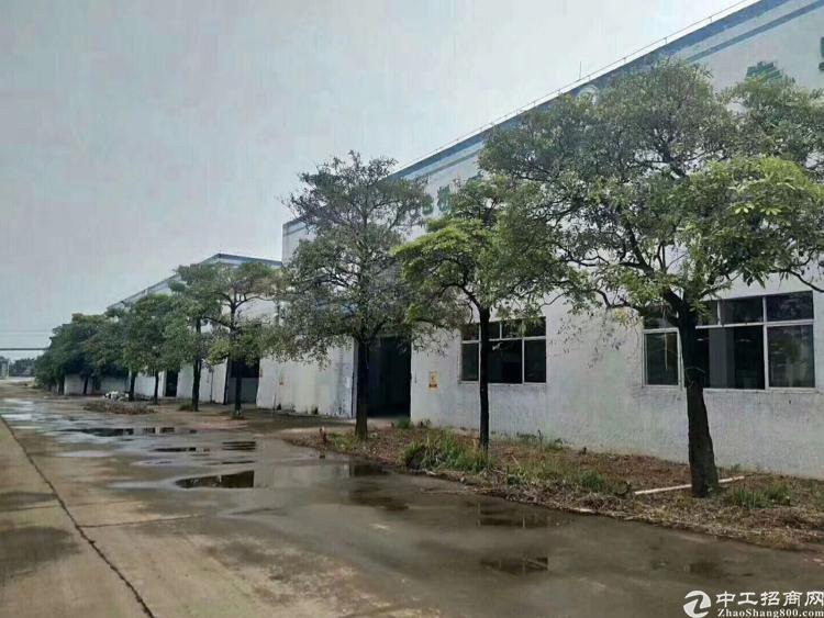 龙华汽车站附近单一层10米高刚构厂房招租-图2