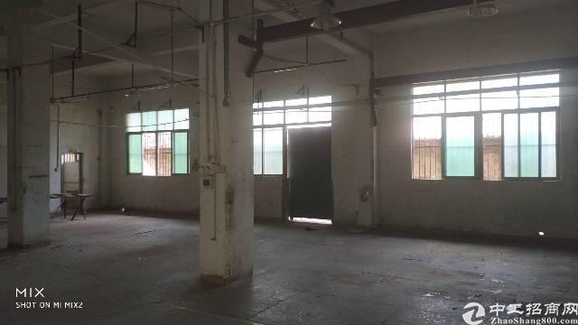 龙岗龙西标准厂房一楼1300平出租-图3