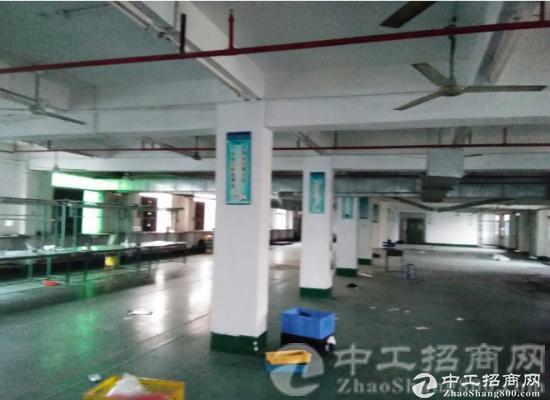 厚街镇桥头村现有标准厂房二楼860平米带精装修厂房出租