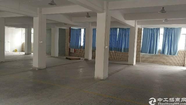 石碣新出工业园标准厂房四楼680㎡,现成水电装修办公室,现房