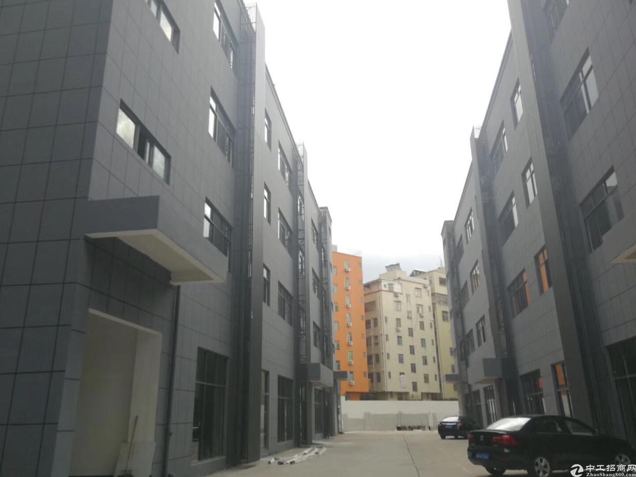 龙华天虹附近楼上带装修厂房出租大小可分租-图2